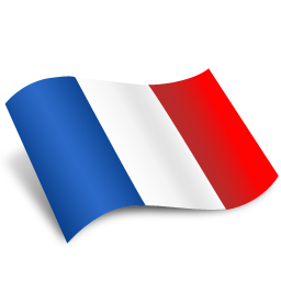 File:French Flag Icon.png