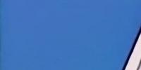 Big T Burgers & Fries