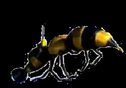 File:Wasp Camera.png