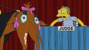 Judge Me Tender 55