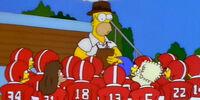 Springfield Wildcats