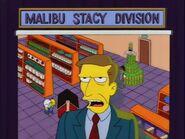 Lisa vs. Malibu Stacy 62