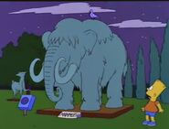 Bart Gets an Elephant 88