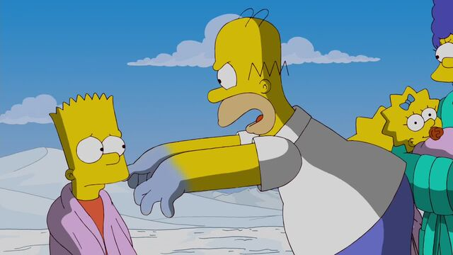 File:A Totally Fun Thing That Bart Will Never Do Again 206.JPG