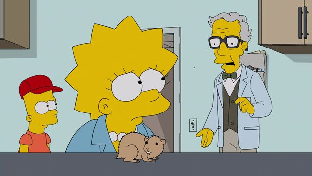 File:Lisa the Veterinarian 102.JPG