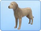 File:Breed-l37.png