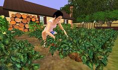Sims3GARDENING