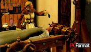 Sims medieval 02