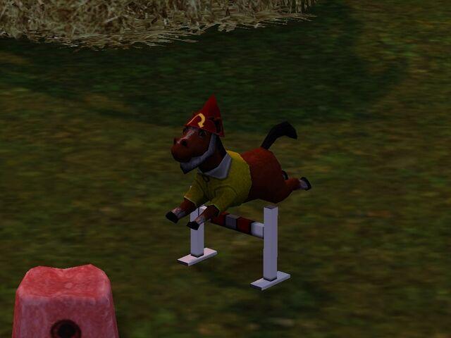 File:Horse gnome.jpg