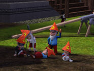 Gnome life stages