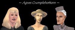 AgnesCrukpAppearances