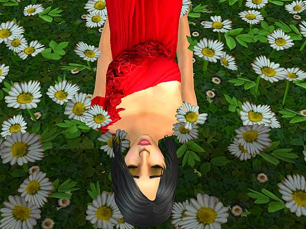 File:Bella's Story (Duy goby) screenshot 14.jpg