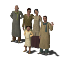 Hawas family