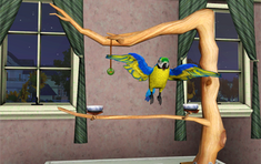 Minor Pets Blue Gold Macaw