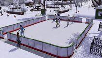Festival winter - ice skating rink