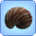 File:Nautilus Shell.png