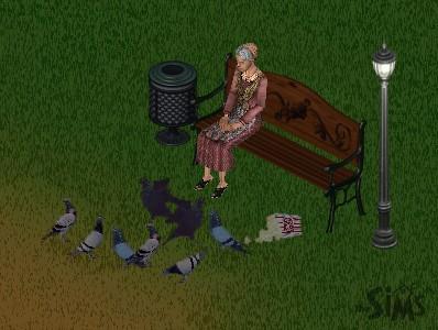File:Pigeon Lady.jpg