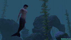 Mermansims