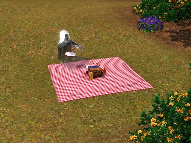 File:Ghost picnic.jpg
