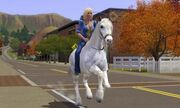 Sim riding horse as a transport
