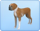 File:Breed-l18.png
