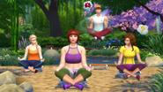 TS4 GP02 zen yoga