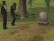 Darleen Dreamer Died