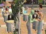 Elizabeth and Venus' Wedding
