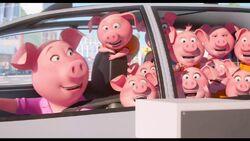 Rosita and her Children
