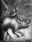 Riding the beast