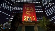 2013 YEAR OF THE SNAKE 1