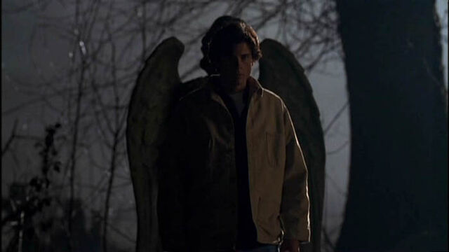 File:Smallville Season1 Ep1 05.jpg