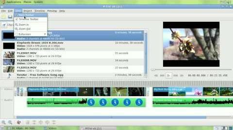 PiTiVi 0.13.1 final
