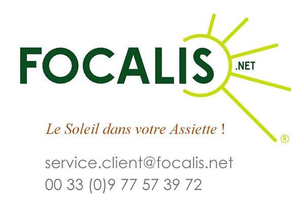 File:FOCALIS expert de la cuisson solaire.jpg