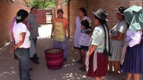 CEDESOL - Changing Lives In Rural Bolivia