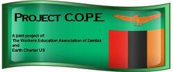 Project COPE logo, 2-6-13