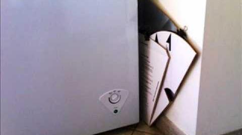 Stifado in DIAMOND solar oven
