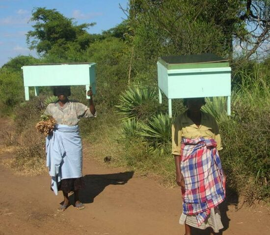 File:ADES - Solar cookers carried home - March 2008.jpg