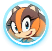 File:Sticks icon (Sonic Boom (Rise of Lyric)).png