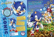 Sonic annual