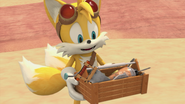 Tails babies