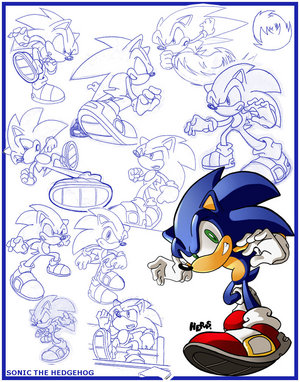 File:Sketches Sonic the Hedgehog by herms85.jpg