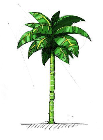 File:Palmtree.jpg