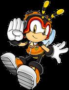 Sonic Art Assets DVD - Charmy