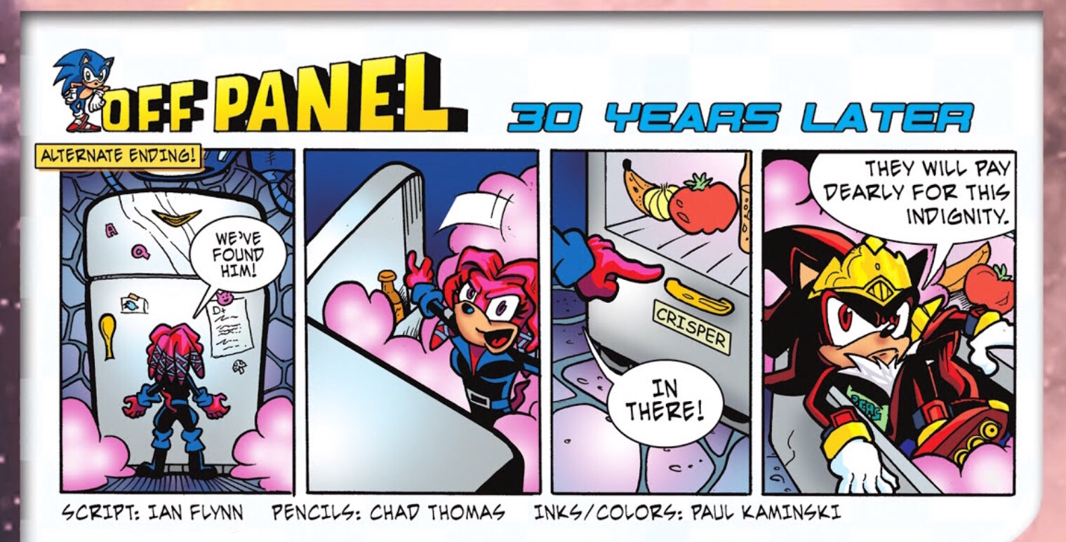 File:Sonic Universe Issue 7 Off Panel 2.jpg