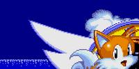 Sonic the Hedgehog 2 (Nick Arcade prototype)