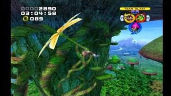 Sonic Heroes Frog Forest (Team Chaotix)