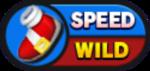 Sonic Runners Speed Wild