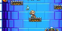 Egg Chaser (Sonic Advance 3)