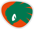 Mario Sonic Rio Jet Flag